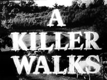 A Killer Walks 1952 DVD - Susan Shaw / Laurence Harvey